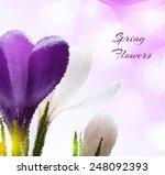 beautiful spring flowers vector ... | Shutterstock .eps vector #248092393