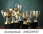 Group Of The Trophies On The...