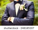groom in the wedding suit | Shutterstock . vector #248185207