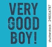 denim text  very good boy ... | Shutterstock .eps vector #248316787