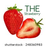 figure ripe strawberries | Shutterstock .eps vector #248360983