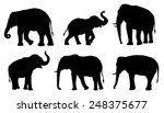 Elephant Silhouettes On The...