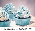 blue cupcakes on a plate.... | Shutterstock . vector #248498107