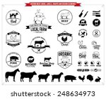 vector meat logos  labels ... | Shutterstock .eps vector #248634973