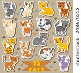 set of various cute cats ... | Shutterstock .eps vector #248670253