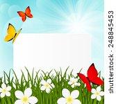 greeting card on green grass | Shutterstock . vector #248845453