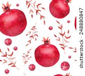 watercolor pomegranate and red... | Shutterstock .eps vector #248880847
