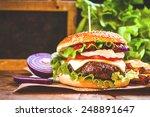 juicy and fragrant hamburger...   Shutterstock . vector #248891647