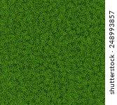 green grass seamless background ...   Shutterstock .eps vector #248993857