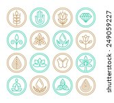 vector organic line icons and... | Shutterstock .eps vector #249059227