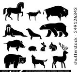 set of various mammals and... | Shutterstock .eps vector #249126343
