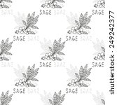 elegant seamless pattern with... | Shutterstock .eps vector #249242377