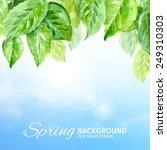 stock illustration of spring... | Shutterstock .eps vector #249310303