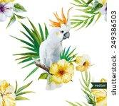 white parrot  hibiscus ...   Shutterstock .eps vector #249386503