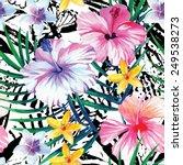 exclusive fresh flowers tropic... | Shutterstock .eps vector #249538273