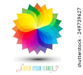 colorful flower icon  beautiful