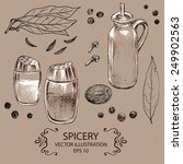 spicery set. hand drawn vector... | Shutterstock .eps vector #249902563