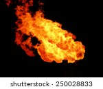 fire | Shutterstock . vector #250028833