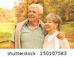 senior couple in park | Shutterstock . vector #250107583