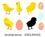 chicken and egg | Shutterstock .eps vector #250134433