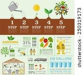 garden work infographic... | Shutterstock .eps vector #250319173