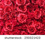 Stock photo soft focus red roses background 250321423