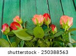 Red And Orange Roses Flowers O...