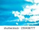 bokeh light background in the... | Shutterstock . vector #250438777