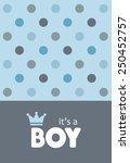 baby announcement card. vector... | Shutterstock .eps vector #250452757