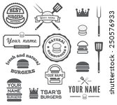 set of logo  labels  stickers... | Shutterstock .eps vector #250576933