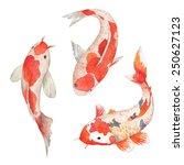 watercolor oriental rainbow... | Shutterstock .eps vector #250627123
