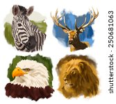 Animals Hand Drawn Vector Head...