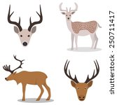deer and their head   isolated...   Shutterstock .eps vector #250711417