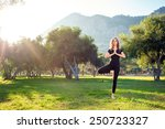 practicing yoga in the morning  ... | Shutterstock . vector #250723327