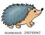 Hedgehog Isolated On White....