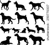 dogs vector illustrations | Shutterstock .eps vector #250770337