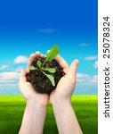 hands in soil | Shutterstock . vector #25078324