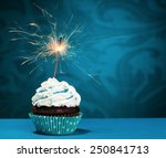 birthday cupcake with a... | Shutterstock . vector #250841713