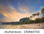 dog on the beach at sunrise ... | Shutterstock . vector #250860703