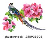 Exotic Pheasant With Flowers...
