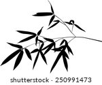 illustration with black bamboo... | Shutterstock .eps vector #250991473