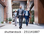 young multiethnic business... | Shutterstock . vector #251141887