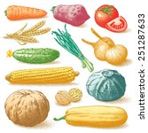 set of hand drawn vegetables ... | Shutterstock . vector #251287633