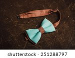 brown and turquoise bow tie on... | Shutterstock . vector #251288797