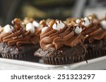 chocolate cupcakes | Shutterstock . vector #251323297