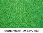 artificial grass background. | Shutterstock . vector #251397403