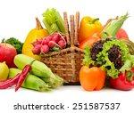 assortment vegetables and... | Shutterstock . vector #251587537