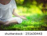 yoga in the park | Shutterstock . vector #251630443