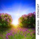 spring landscape | Shutterstock . vector #252062167