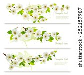 three spring banners with... | Shutterstock .eps vector #252157987
